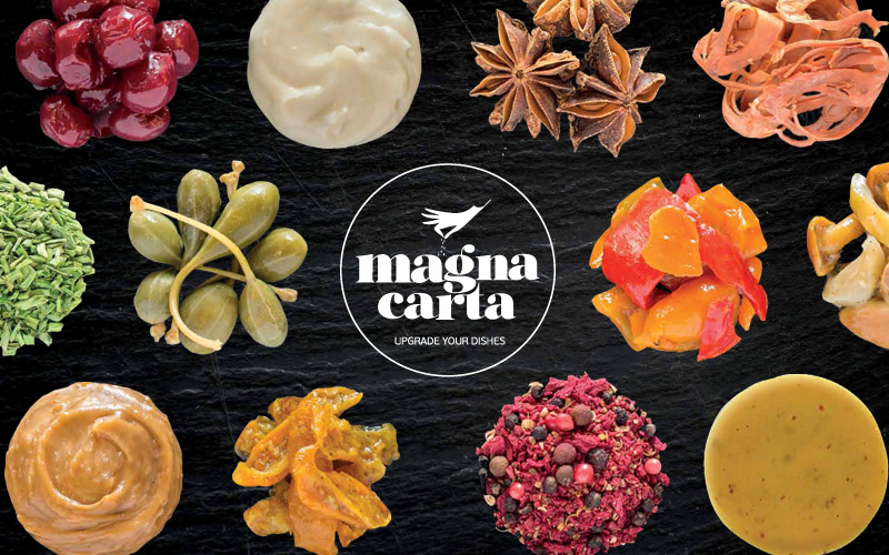 Καλωσορίζουμε τα προϊόντα Magna Carta!