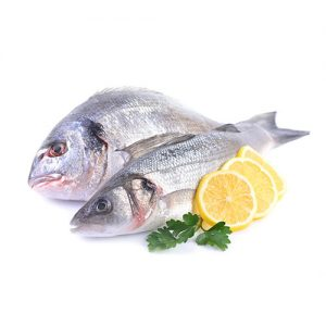 Flora Fish